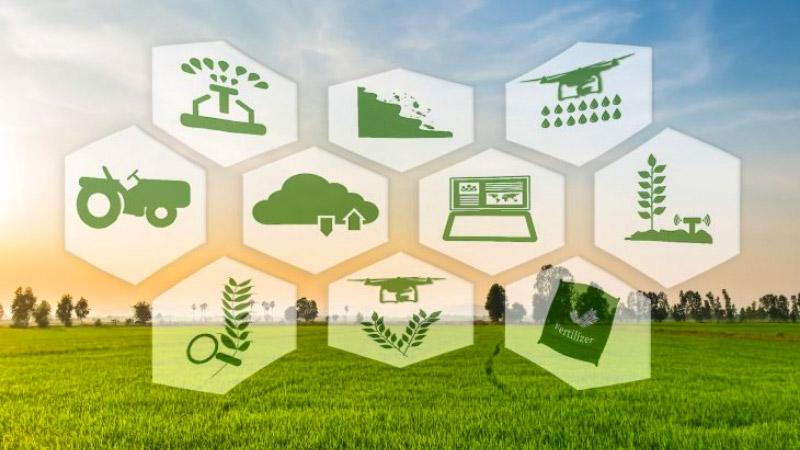 Ứng dụng Blockchain trong nông nghiệp